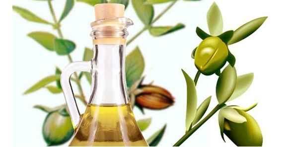 oleo-de-jojoba-beneficios-e-como-usar