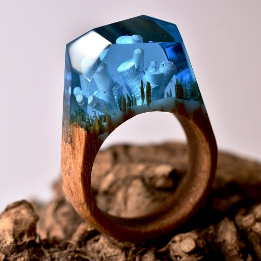 Anéis Exclusivos – Paisagens Em Miniaturas frozens