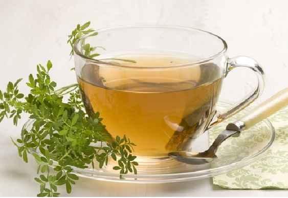 Arruda – Benefícios e Chá