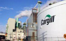 Cargill Programa de Trainees – Como Participar