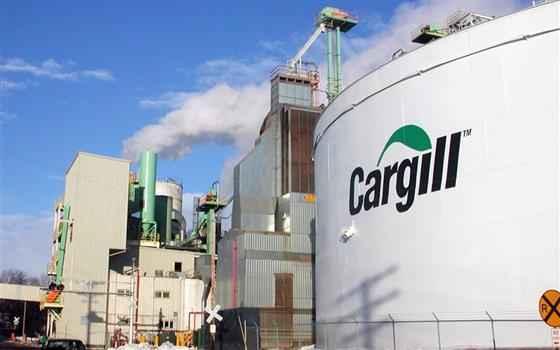cargill-programa-de-trainees-como-participar