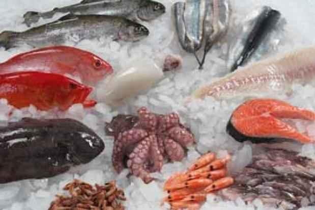 circulacao-do-sangue-alimentos-peixes