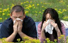 Crises Alérgicas Durante a Primavera – Como Lidar