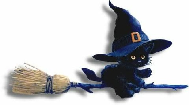 Dia do Halloween gato
