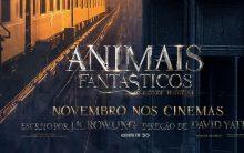Filme Animais Fantásticos e Onde Habitam – Sinopse e Estreia
