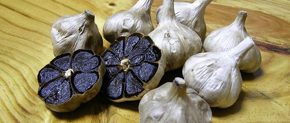 Alho Negro – Benefícios