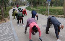 Crawling Malhar Engatinhando – Tendência Fitness