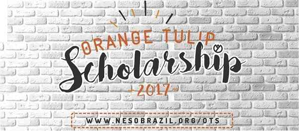 bolsas-na-holanda-orange-tulip-scholarships