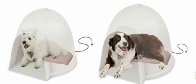 Cama Para Cachorro - Como Escolher