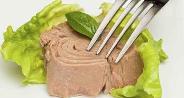 Dieta do Atum – Como Fazer