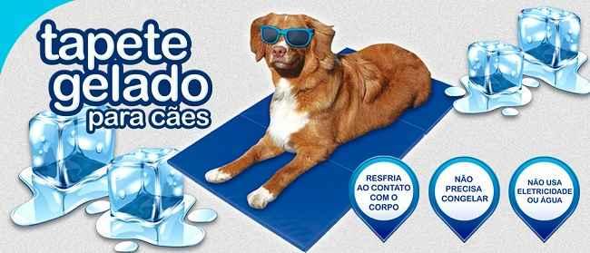 Tapete Gelado Para Cães – Como Funciona