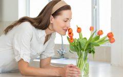 Casa Cheirosa – Dicas Como Deixar