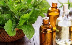 Óleo de Hortelã – Benefícios e Receita