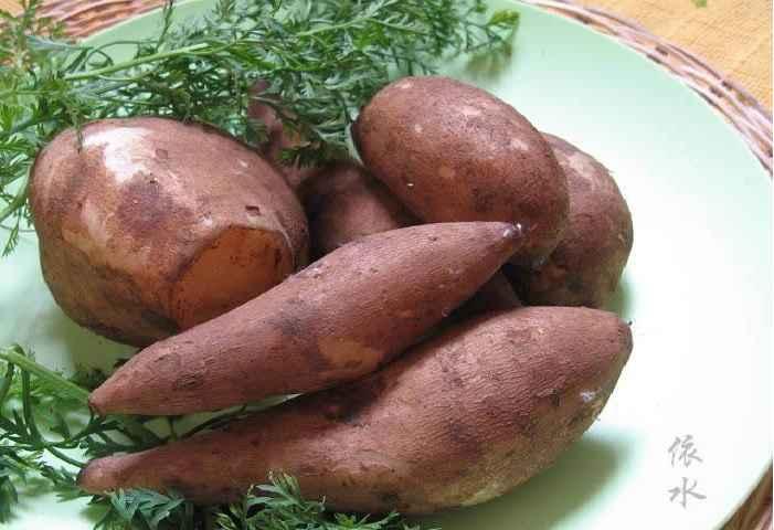 Batatas Yacon – Benefícios e Suco Para Diabetes