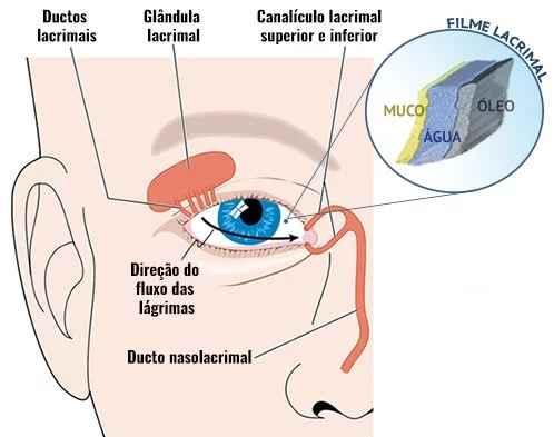 Síndrome do Olho Seco – Causas e Sintomas