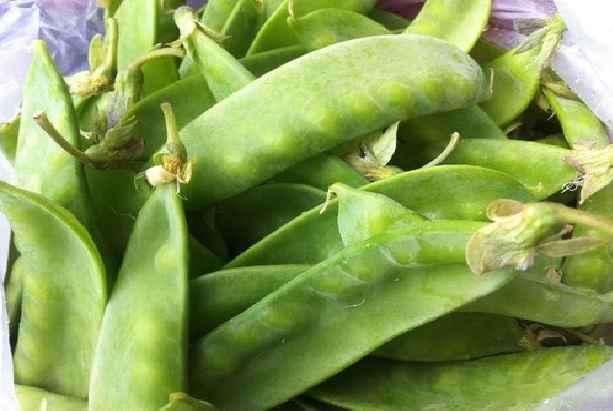 Legume Ervilha – Benefícios Para Saúde