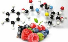 Dieta Ortomolecular – Como Funciona e Cardápio