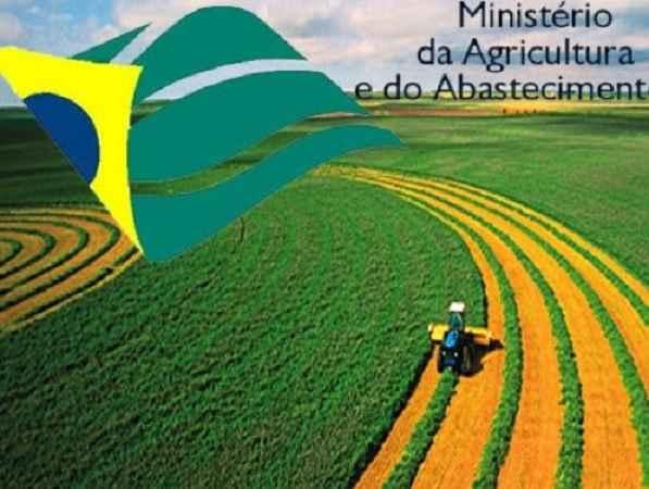 Estagio Ministério da Agricultura, Pecuária e Abastecimento – Inscrições