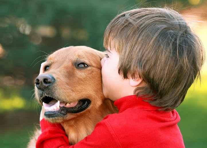 Asma Em Cães – Causas e Tratamento