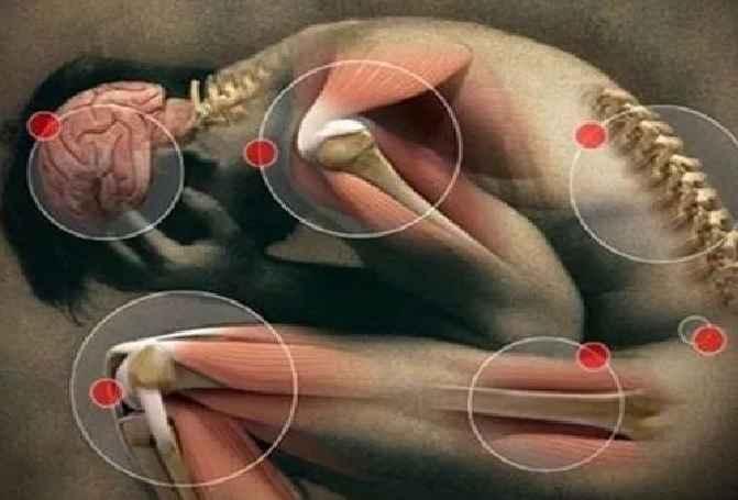 Falta de Magnésio No Organismo – Sintomas, Causas e Como Repor