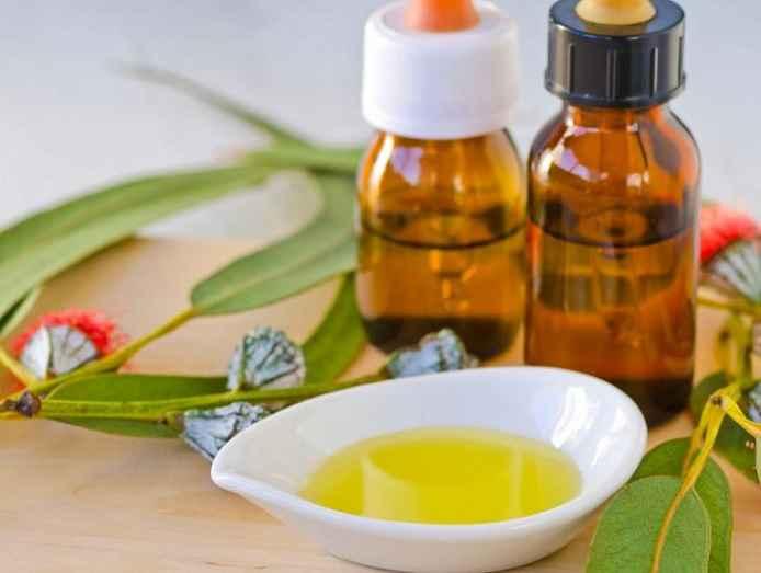 Repelente Natural Com Óleos Essenciais – Como Usar