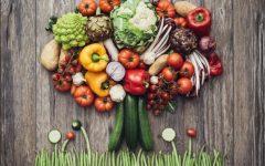 Dieta Plant-Based – Como Fazer