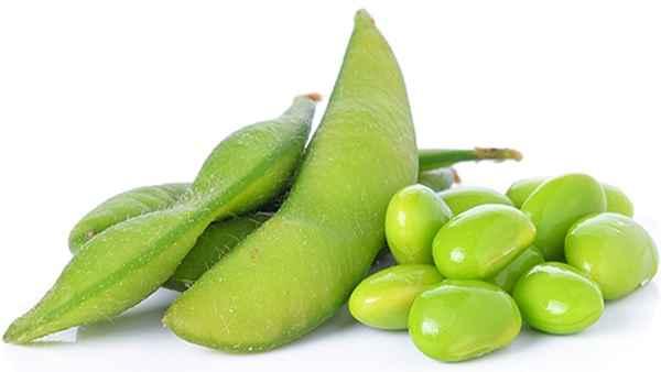 Edamame de Soja Verde – Benefícios e Como Preparar