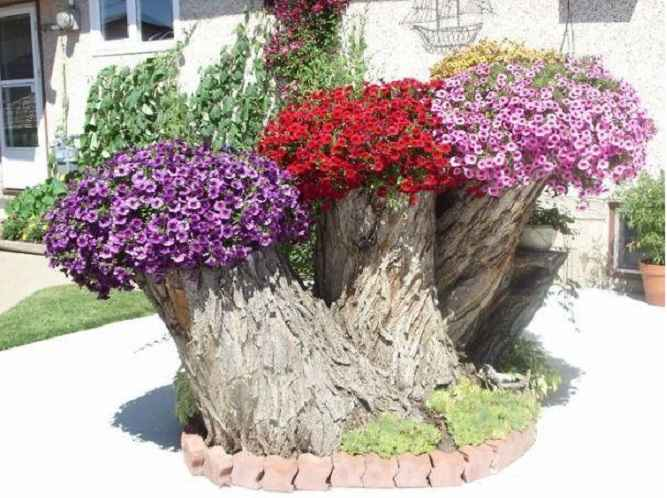 Floreiras Em Troncos de Árvores – Como Fazer