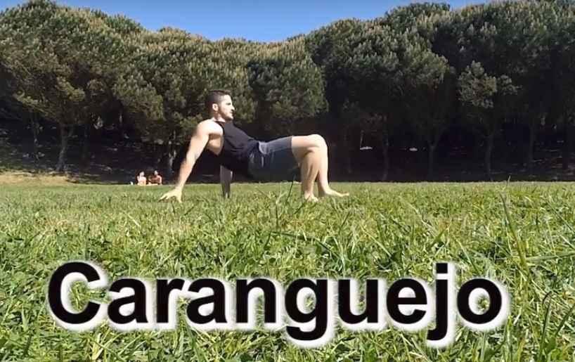 Ginástica Que Imitam os Animais – Dicas de Exercícios