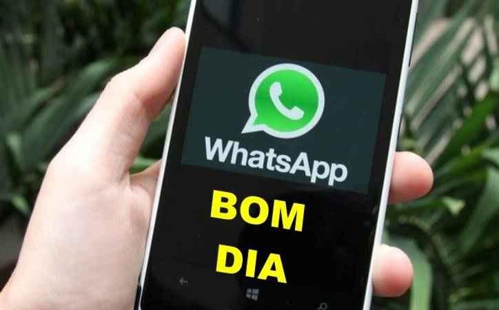 Apagar Mensagens do Whatsapp - Aplicativo