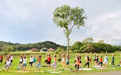 Yoga Em São Paulo – Aulas Gratuitas