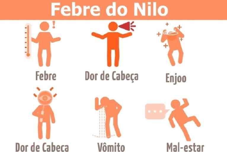 Febre do Nilo Ocidental – Causas e Sintomas