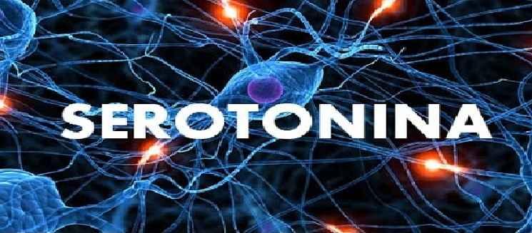 Serotonina Natural Baixa – Sintomas e Como Aumentar