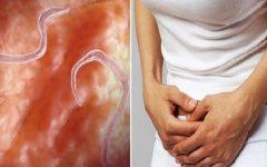 Vermes no Intestino – Sintomas e Sintomas no Bebê