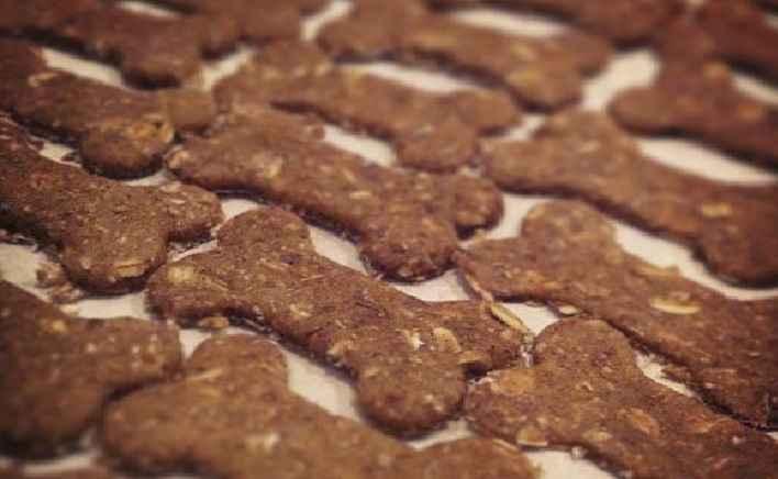 Biscoito de Abobora Para Cachorro – Receita