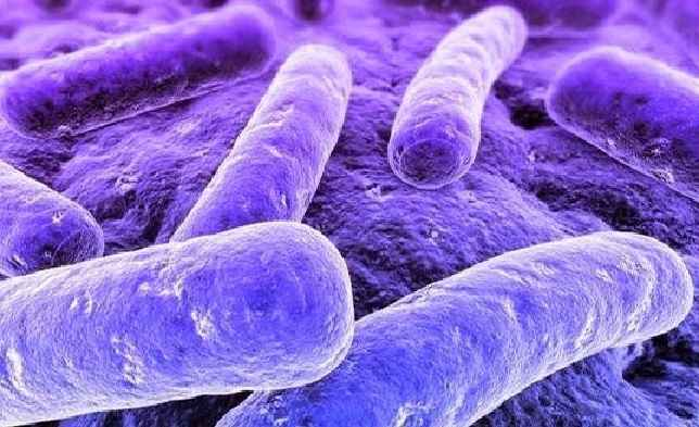 DST Mycoplasma Genitalium – Sintomas e Tratamento