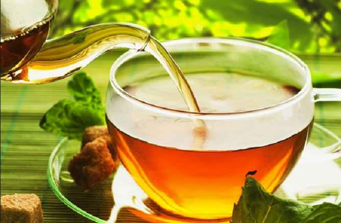 Erva Canela de Velho – Benefícios e Receita de Chá