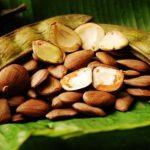 Óleo de Pracaxi – Benefícios