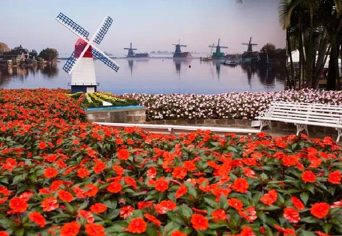 Festa das Flores em Holambra - Expoflora 2018
