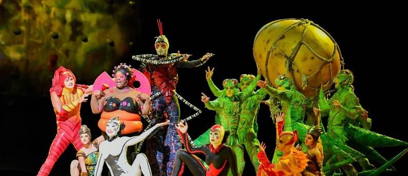 Cirque du Soleil No Brasil Em 2019 – Programação