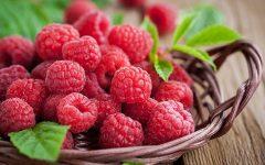 Fruta Framboesa