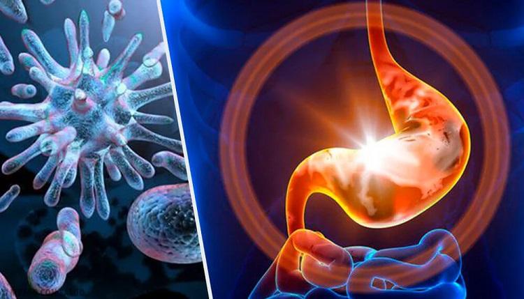 Gastroenterite – Tipos e Sintomas
