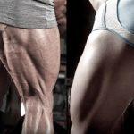 Massa Muscular Nas Pernas – Dicas de Como Ganhar