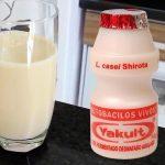 Yakult Caseiro - Receita