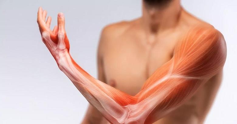 Doença de Pompe – Principais Sintomas