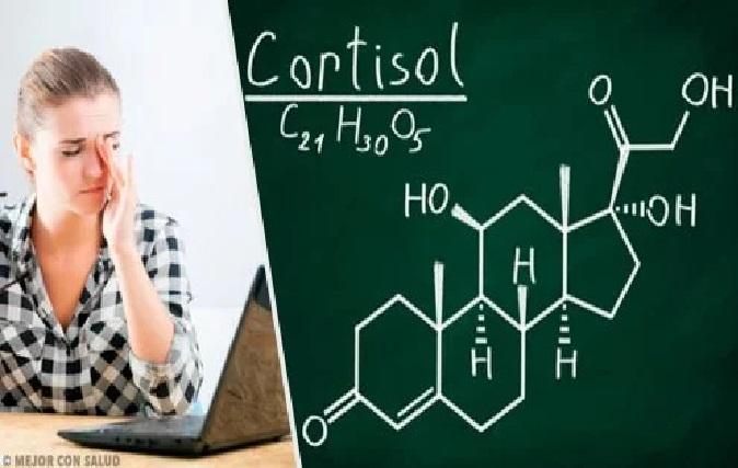 Hormônio Cortisol Alto – Causas, Sintomas e Tratamento