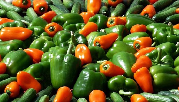 Vegetal Pimentão – Benefícios