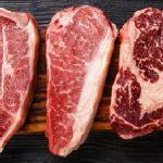 Dieta do Carnívoro - Alimentos