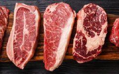 Dieta do Carnívoro – Alimentos