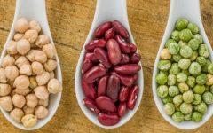 Proteína Vegetal – Benefícios e Dicas